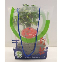 Carry Bag valentine-mothersady for bonsai mix 15 cm+ plate